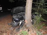 Aktuálně: Náraz do stromu zdemoloval Volkswagen k nepoznání, řidička je v péči lékařů