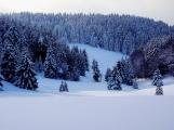 Nejchladnější týden přijde před Vánoci