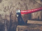 Příští týden se budou v Příbrami opět kácet dřeviny