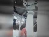 VIDEO: Dívky si natáčely ničení výzdoby a altánku na Novém rybníku