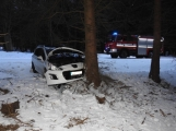 Aktuálně: U Obecnice narazil Peugeot do stromu, řidič vyvázl bez zranění