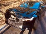 Aktuálně: Jelen nepřežil srážku s autem