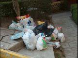 Příbramáci za loňský rok vytřídili 2200 tun odpadu