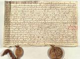 Jak vypadá první písemná zmínka o Příbrami?