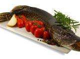Ryby i zvěřina - pochutná si celá rodina