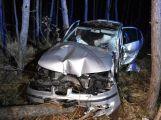 Řidička vylétla na D4 u Jíloviště z dálnice do lesa, kde porazila několik stromů