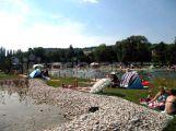 Hygiena zahájila sledování kvality vody v některých koupalištích na Příbramsku