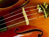 Příbramský festival přinese indický pohled na Dvořákovu hudbu