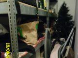 Hygieniky v restauraci na Spartaku překvapil vánoční stromeček