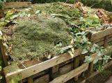 Technické služby budou přistavovat velkoobjemové kontejnery na biologický odpad ze zahrad