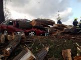 Právě teď: Strom zdemoloval vozidlo, řidič se podruhé narodil