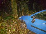 Právě teď: Řidiče oslnil protijedoucí vůz, skončil v lese