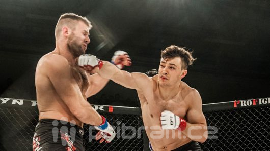 GCF: Back in The Fight 4 zná své vítěze