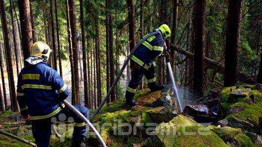 Hasiči zlikvidovali v CHKO Brdy začínající požár
