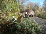Středočeským hasičům připravil silný vítr přes tisíc zásahů! ()