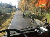 Středočeským hasičům připravil silný vítr přes tisíc zásahů! (9)