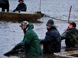 Dolejší Padrťský rybník byl pod útokem rybářů (24)