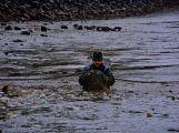 Dolejší Padrťský rybník byl pod útokem rybářů (27)