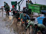 Dolejší Padrťský rybník byl pod útokem rybářů (29)
