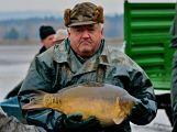 Dolejší Padrťský rybník byl pod útokem rybářů (14)