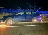 Namol opilý řidič skončil ve stromě (1)