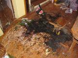 Štědrý den ve Středočeském kraji ve znamení hořících stromečků (2)