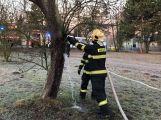K hořícímu stromu právě teď vyjel HZS Příbram ()