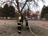 K hořícímu stromu právě teď vyjel HZS Příbram (1)