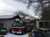Aktuálně: Hasiči vyjeli likvidovat padlý strom (2)