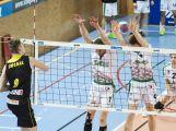 Kocouři porazili Brno a play-off mají jisté (4)