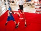 Jak si vedli o víkendu příbramští boxeři? (VÝSLEDKY) (7)
