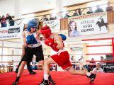 Jak si vedli o víkendu příbramští boxeři? (VÝSLEDKY) (5)