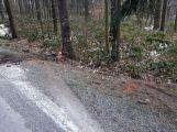 Právě teď: Řidič nezvládl zatáčku a po smyku narazil  přímo do stromu,  pasažérka je zraněná (1)