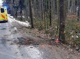 Právě teď: Řidič nezvládl zatáčku a po smyku narazil  přímo do stromu,  pasažérka je zraněná (9)