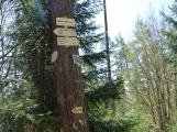 Vyhlídka z rozhledny na Veselém vrchu stojí za výlet (5)
