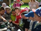 Den Země oslavily děti z Dobříše velkolepě (15)