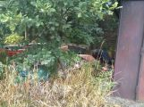 Domy v Březnické stále budí hrůzu (3)