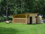 Minizoo obydlena! Ovce a kůzlata si zvykají na nové prostředí (2)