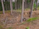 Naučná stezka povede kolem Draka v Žežických skalách (1)