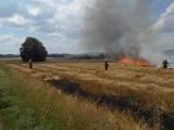 Boj s ohnivým živlem krok za krokem. Hasiči zdolávají požár pole u Horčápska. (18)