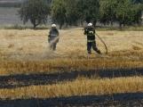 Boj s ohnivým živlem krok za krokem. Hasiči zdolávají požár pole u Horčápska. (15)