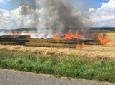Boj s ohnivým živlem krok za krokem. Hasiči zdolávají požár pole u Horčápska. (13)