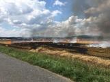 Boj s ohnivým živlem krok za krokem. Hasiči zdolávají požár pole u Horčápska. (14)