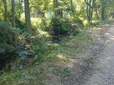 V lesoparku bylo pokáceno několik stromů (AKTUALIZOVÁNO) (8)