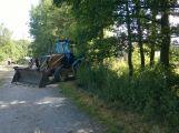 V lesoparku bylo pokáceno několik stromů (AKTUALIZOVÁNO) (5)