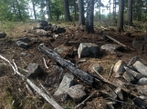 """Požářiště poblíž """"Kazatelny"""" v oblasti Třemošné po několika zásazích (2)"""
