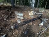 """Požářiště poblíž """"Kazatelny"""" v oblasti Třemošné po několika zásazích (3)"""