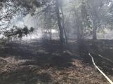 AKTUÁLNĚ: U vrcholu kopce Strážný, nedaleko Trhových Dušníků hoří les ()