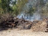 AKTUÁLNĚ: U vrcholu kopce Strážný, nedaleko Trhových Dušníků hoří les (22)