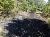 AKTUÁLNĚ: U vrcholu kopce Strážný, nedaleko Trhových Dušníků hoří les (23)